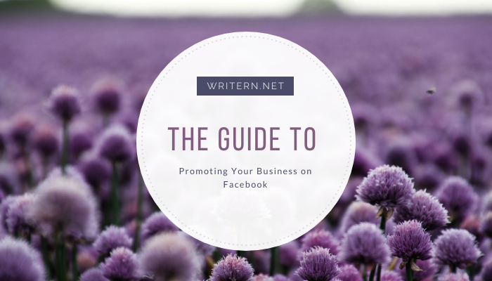 5 Guidelines for Promoting Your Business on Facebook